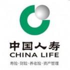 中国人寿海城公司