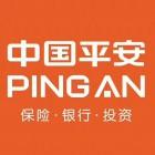 中国平安人寿海城分公司
