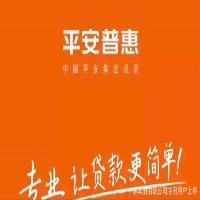 平安普惠信息信息服务有限公司
